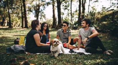 4 critères pour bien choisir la gamelle pour chien